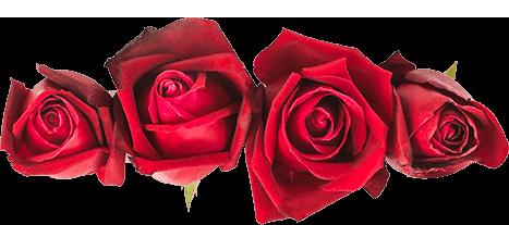 Testimonials Roses